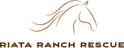 Riata Ranch Rescue